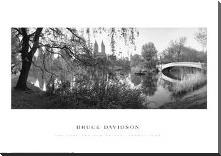 Lake And Bow Bridge, Central Park, 1992 art print poster with block mounting