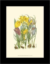 Summer Garden III art print poster with simple frame