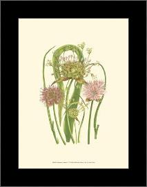 Summer Garden VI art print poster with simple frame
