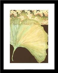 Filigree Ginkgo II art print poster with simple frame