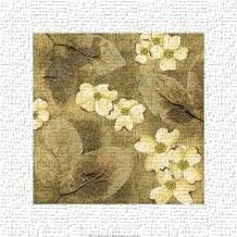 Sun-Kissed Dogwoods I art print poster transferred to canvas