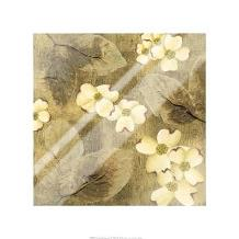 Sun-Kissed Dogwoods I art print poster with laminate