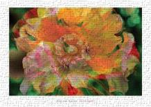 Flower Painter art print poster transferred to canvas