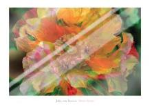 Flower Painter art print poster with laminate