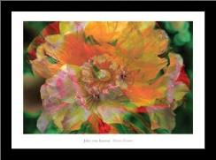 Flower Painter art print poster with simple frame
