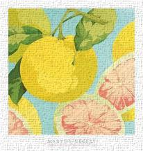 Fresh Grapefruits art print poster transferred to canvas