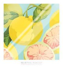 Fresh Grapefruits art print poster with laminate