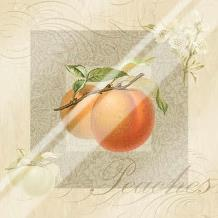 Fruits Blossoms II art print poster with laminate