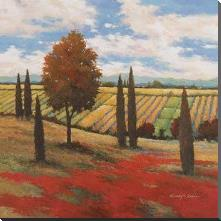 Chianti Country I art print poster with block mounting