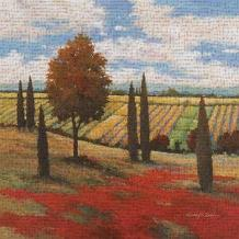 Chianti Country I art print poster transferred to canvas