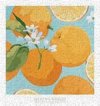 Fresh Oranges art print poster transferred to canvas