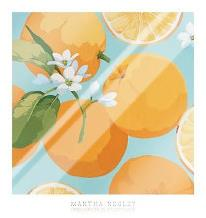 Fresh Oranges art print poster with laminate