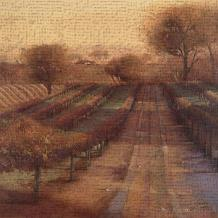 Vineyard Vista art print poster transferred to canvas
