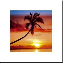 Sunset - Palm Tree art print poster with block mounting