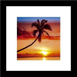 Sunset - Palm Tree art print poster with simple frame