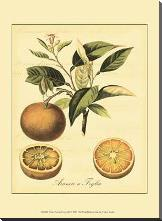 Petite Tuscan Fruits III art print poster with block mounting