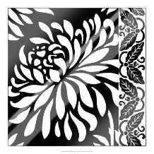 Graphic Chrysanthemums I art print poster with laminate