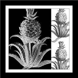 Pop Pineapple II art print poster with simple frame