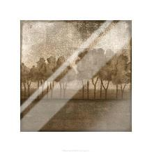 Trees At Dusk I art print poster with laminate