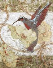 Humming Bird II art print poster transferred to canvas