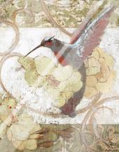 Humming Bird II art print poster with laminate