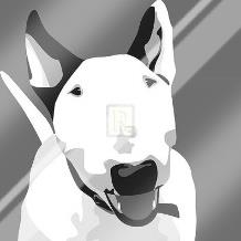 Bull Terrier art print poster with laminate
