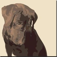 Chocolate Labrador art print poster with block mounting