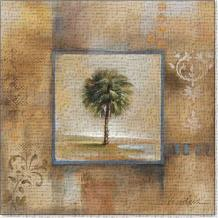 Sunlit Palmetto I 12X12 art print poster transferred to canvas