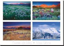 Four Seasons art print poster with block mounting