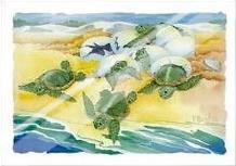Turtle Nestings art print poster with laminate