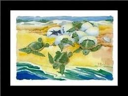 Turtle Nestings art print poster with simple frame