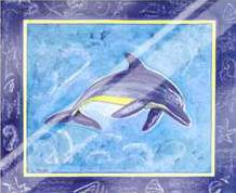 Dolphin II art print poster with laminate