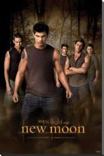 Twilight - New Moon art print poster with block mounting