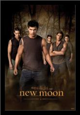 Twilight - New Moon art print poster with simple frame