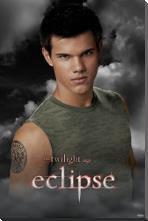 Twilight Eclipse art print poster with block mounting