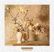 Magnolia Branches art print poster transferred to canvas