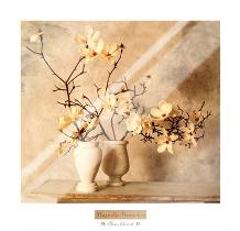 Magnolia Branches art print poster with laminate