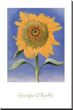Sunflower, New Mexico, 1935 art print poster with block mounting