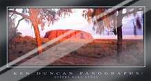 Desert Oaks Uluru art print poster with laminate