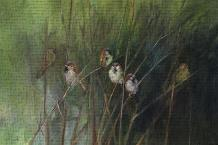 Summer Sparrows art print poster transferred to canvas
