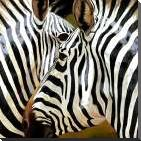 Zebra Close-up art print poster with block mounting