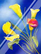 Buttercup art print poster with laminate