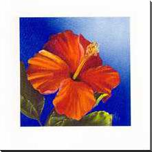 Crimson Red - Hibiscus art print poster with block mounting