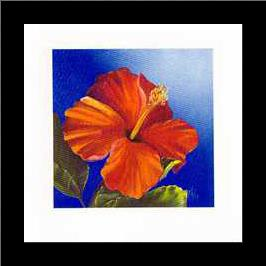 Crimson Red - Hibiscus art print poster with simple frame