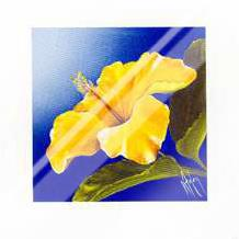 Golden Sunset - Hibiscus art print poster with laminate