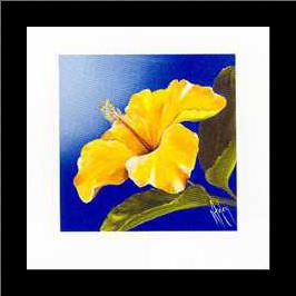 Golden Sunset - Hibiscus art print poster with simple frame