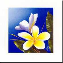 Frangipani Scent art print poster with block mounting