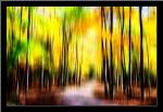 Autumn Impressions IV art print poster with simple frame