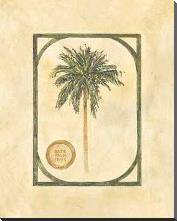Date Palm art print poster with block mounting