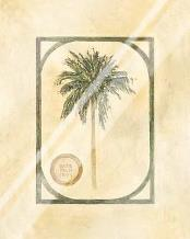 Date Palm art print poster with laminate